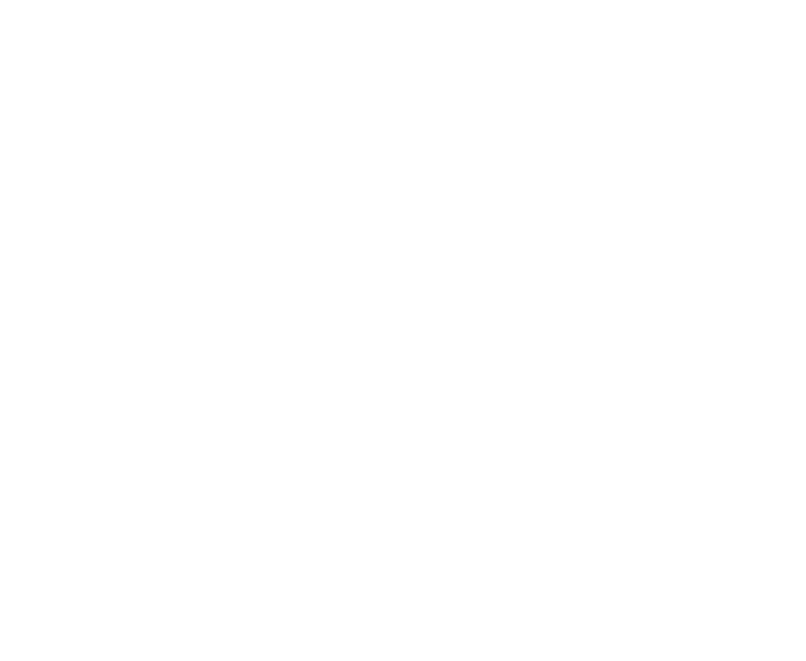 King Of Scots